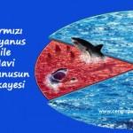 10 soruluk test … Şirketiniz hangi renk suyun içinde yüzüyor, Kırmızı mı ? Mavi mi ?