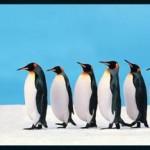 Bir yöneticiyi etkin ve lider yapan 7 adım nedir  ? (Bölüm 1)